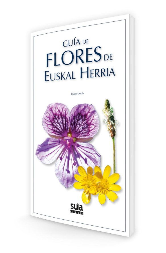 flores_guiamtdotxiki