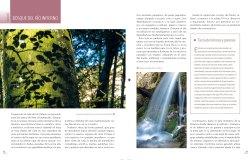 02 BOSQUES_ASTURIAS.indd